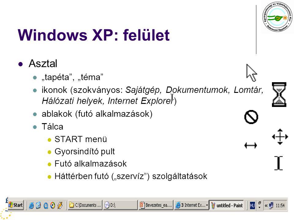 """Windows XP: felület Asztal """"tapéta"""", """"téma"""" ikonok (szokványos: Sajátgép, Dokumentumok, Lomtár, Hálózati helyek, Internet Explorer) ablakok (futó alka"""