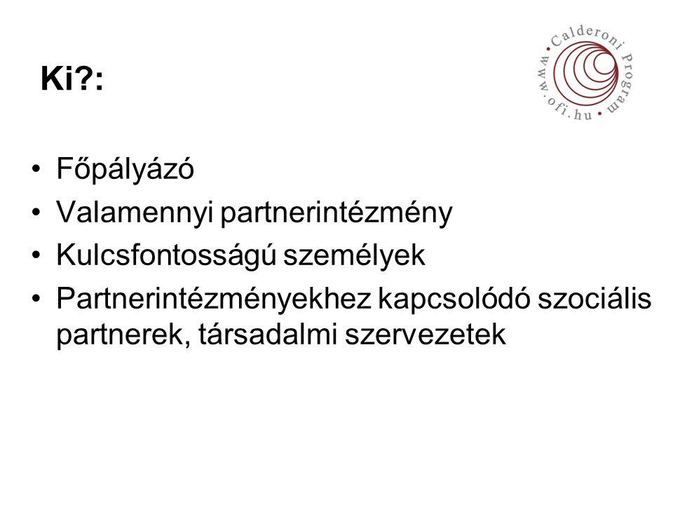 Ki : Főpályázó Valamennyi partnerintézmény Kulcsfontosságú személyek Partnerintézményekhez kapcsolódó szociális partnerek, társadalmi szervezetek