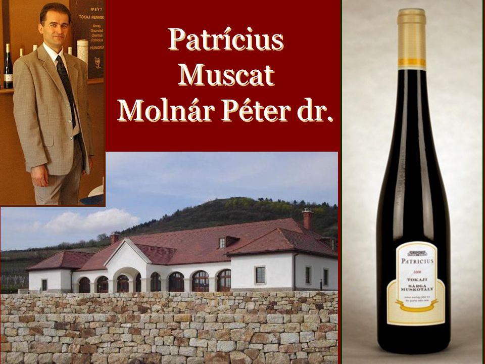 PatriciusPatricius