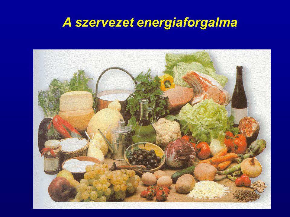 Energiára van szükség: a szövetek képződése, működése, az idegrendszerben az elektromos vezetés, az izommunka és az állandó testhőmérséklet fenntartása miatt Az energiaforgalom mérése: direkt vagy indirekt kalorimetria