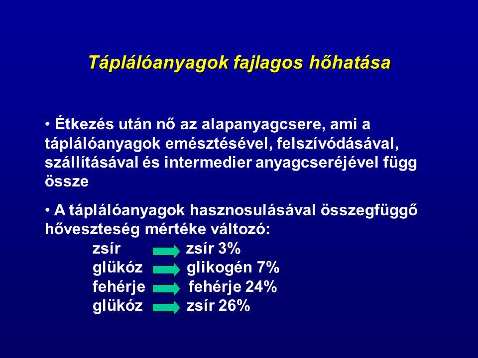 Táplálóanyagok fajlagos hőhatása Étkezés után nő az alapanyagcsere, ami a táplálóanyagok emésztésével, felszívódásával, szállításával és intermedier anyagcseréjével függ össze A táplálóanyagok hasznosulásával összegfüggő hőveszteség mértéke változó: zsír zsír 3% glükóz glikogén 7% fehérje fehérje 24% glükóz zsír 26%