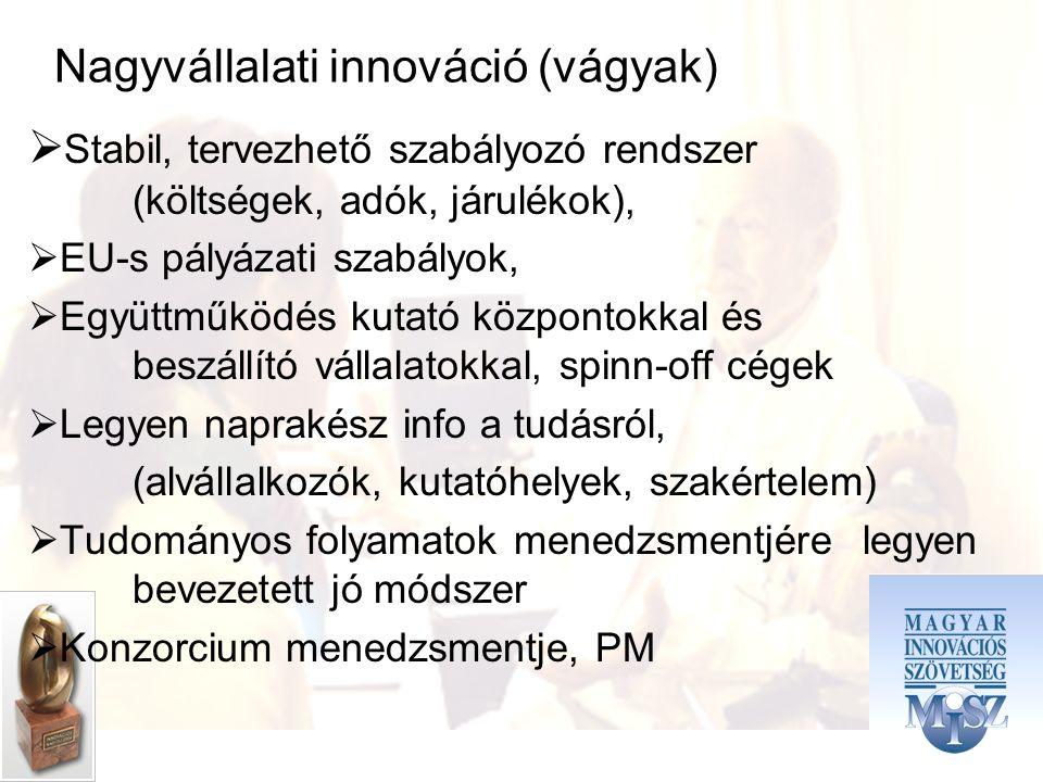 Nagyvállalati innováció (vágyak)  Stabil, tervezhető szabályozó rendszer (költségek, adók, járulékok),  EU-s pályázati szabályok,  Együttműködés kutató központokkal és beszállító vállalatokkal, spinn-off cégek  Legyen naprakész info a tudásról, (alvállalkozók, kutatóhelyek, szakértelem)  Tudományos folyamatok menedzsmentjére legyen bevezetett jó módszer  Konzorcium menedzsmentje, PM