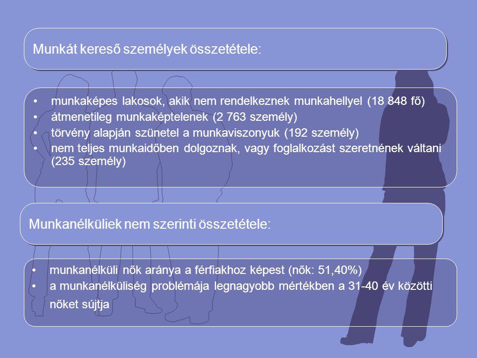A munkanélküliség képzettség szerinti eloszlása Munkanélküliek 38,12%-a először kezdett munkakeresésbe Pályakezdő munkanélküliek száma növekedett: –munkatapasztalat hiánya –megfelelő informáltság hiánya A munkanélküliség képzettség szerinti eloszlása Képzettségi szintMunkanélküliek száma Munkanélküliek százaléka Szabad munkahelyek Nem teljes általános iskolai és általános iskolai képzettség 10 87540,76%5 656 Félig szakképzettek 1 6576,21%1 660 Szakképzettek6 58924,70%5 980 Négy éves középiskola vagy gimnázium 6 12422,95%4 112 Magasan szakképzetek2380,89%152 Főiskolai képzettségűek6872,58%487 Egyetemi képzettségűek5071,90%1 915 Tudományok doktorai20,01%43 Összesen:26 679100,00%20 005