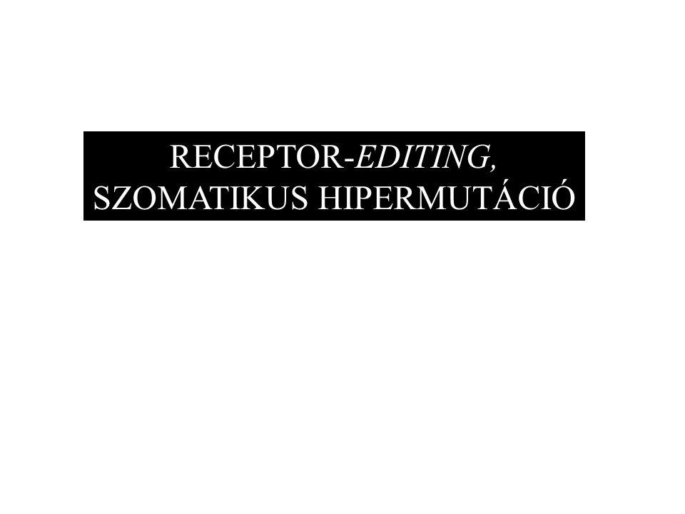 RECEPTOR-EDITING, SZOMATIKUS HIPERMUTÁCIÓ