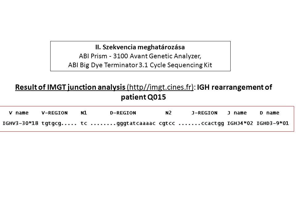 II. Szekvencia meghatározása ABI Prism - 3100 Avant Genetic Analyzer, ABI Big Dye Terminator 3.1 Cycle Sequencing Kit Result of IMGT junction analysis