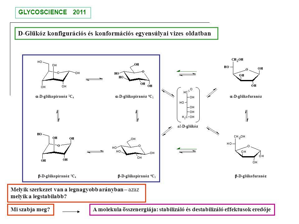 al-D-glükóz  -D-glükopiranóz 4 C 1  -D-glükopiranóz 4 C 1  -D-glükofuranóz  -D-glükofuranóz D-Glükóz konfigurációs és konformációs egyensúlyai viz