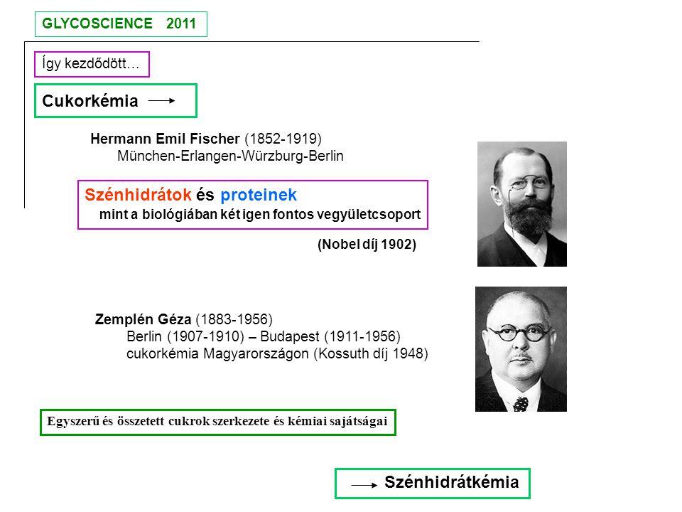 Hermann Emil Fischer (1852-1919) München-Erlangen-Würzburg-Berlin Így kezdődött… Zemplén Géza (1883-1956) Berlin (1907-1910) – Budapest (1911-1956) cu