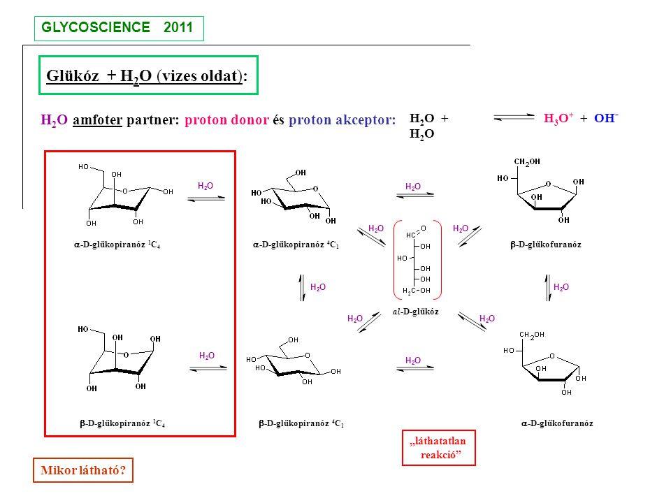 al-D-glükóz  -D-glükopiranóz 4 C 1  -D-glükopiranóz 4 C 1  -D-glükofuranóz  -D-glükofuranóz  -D-glükopiranóz 1 C 4  -D-glükopiranóz 1 C 4 Glükóz