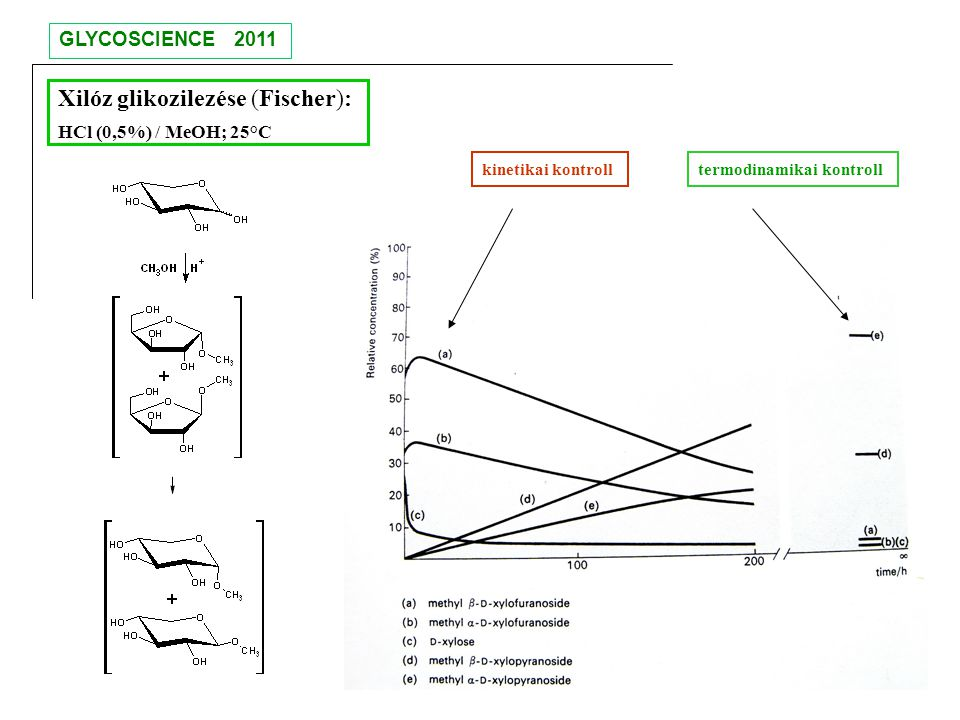 Xilóz glikozilezése (Fischer): HCl (0,5%) / MeOH; 25°C kinetikai kontrolltermodinamikai kontroll GLYCOSCIENCE 2011