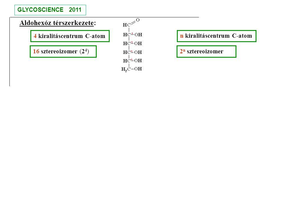 Aldohexóz térszerkezete: 4 kiralitáscentrum C-atom 16 sztereoizomer (2 4 ) n kiralitáscentrum C-atom 2 n sztereoizomer GLYCOSCIENCE 2011 Melyik a glükóz?