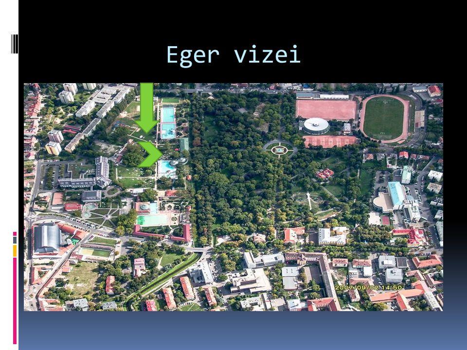 Eger vizei