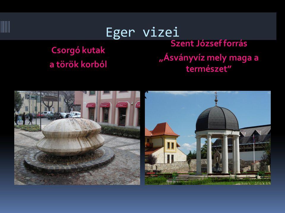 """Csorgó kutak a török korból Szent József forrás """"Ásványvíz mely maga a természet"""""""