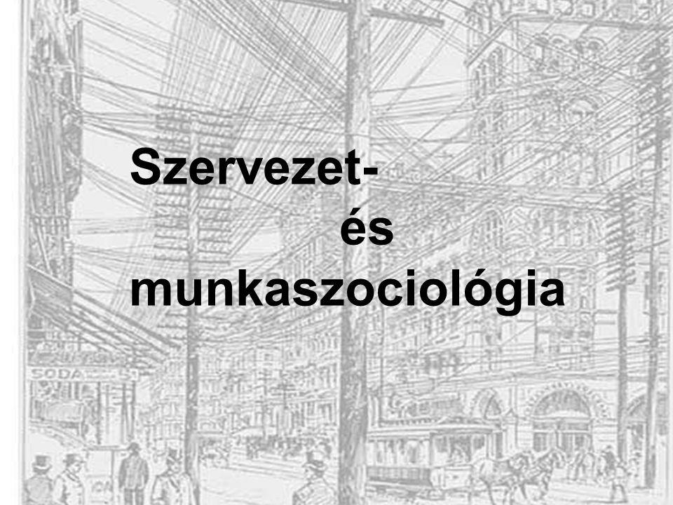 Dr. Demszky Alma Míra Szervezet- és munkaszociológia