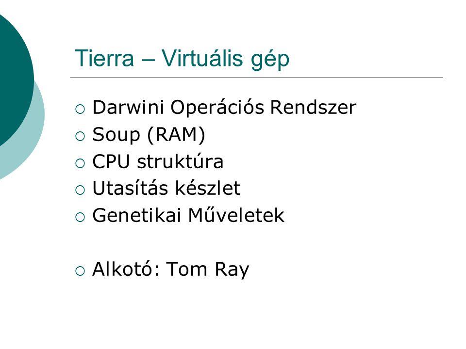 """Tierra - Darwini Operációs Rendszer  Darwini """"módon kezeli folyamatok populácóját  Fontosabb részei Slicer Reaper Memória allokáció Genetikai műveletek Zavarok"""