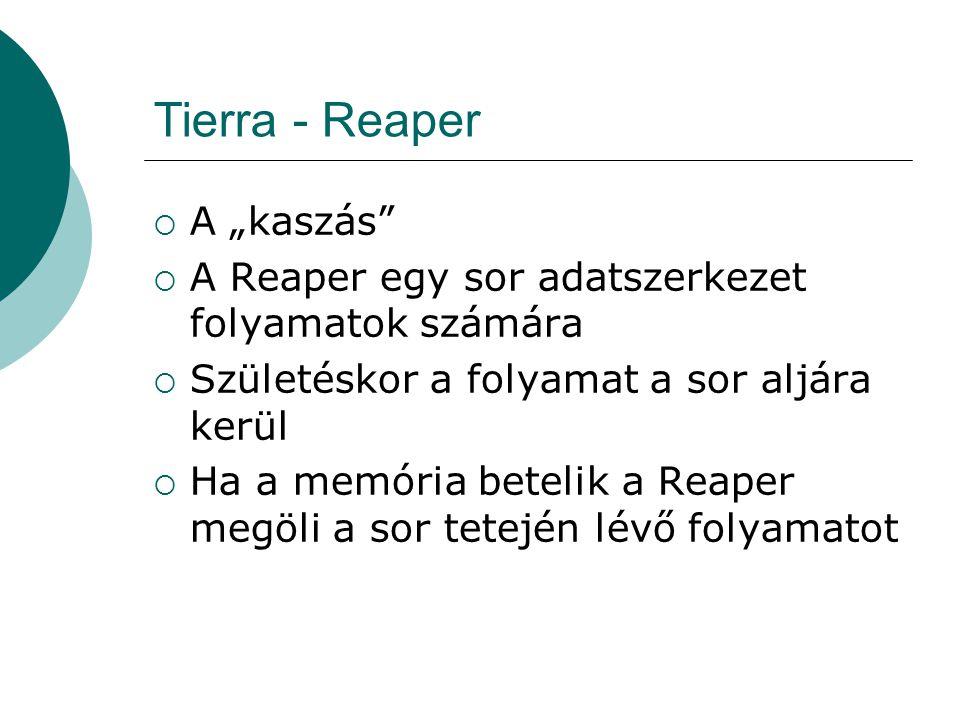 Tierra - Reaper  Az idősebb folyamat hal meg előbb  Ha egy folyamat hibát generál, egy pozicióval feljebb lép a Reaper sorban  A divide vagy mal utasítások sikeres végrehajtása esetén a folyamat egy pozicióval lejjeb lép a Reaper sorban