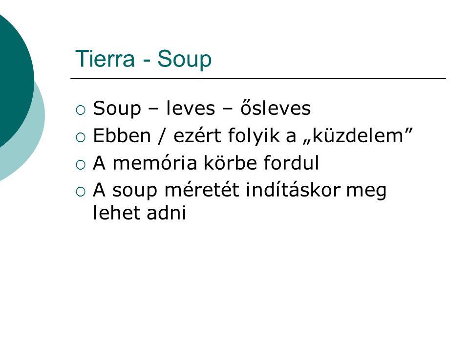Tierra – CPU struktúra  Utasítás mutató, IP  Regiszterek (4 db)  Stack (10 szavas, visszaforduló)  Stack pointer  Flag-ek