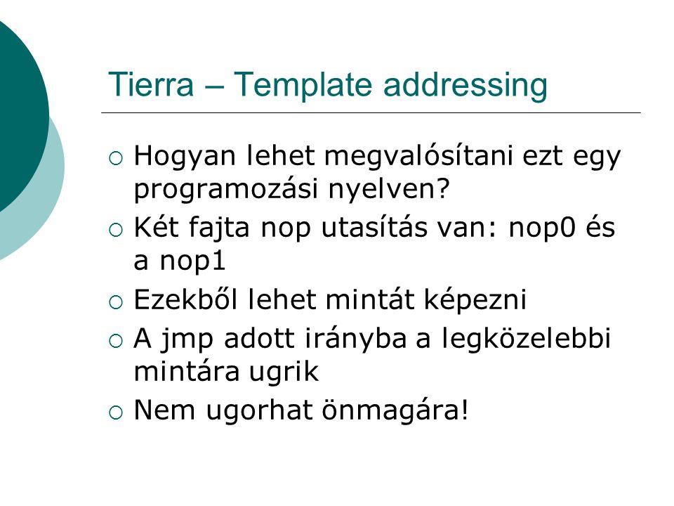 Tierra – Template addressing Példa: jmp nop0; template 0110 nop1 nop0 ; utasítások nop1; illeszkededő nop0; complementary nop0; template 1001 nop1 ; utasítás