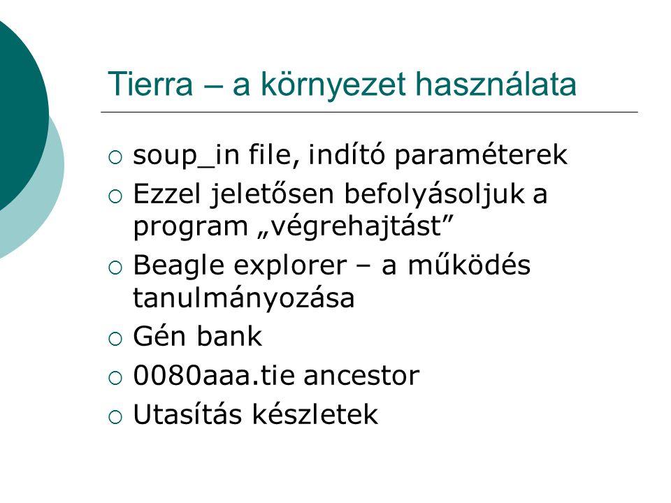 Tierra – a környezet használata  Segéd programok  Probe – a Tierra log file-ban hasonló genomokat keres  A Tierra is interaktív  Debug-olás is van a Tierra-ban és Beagle-ben  Rengeteg statisztika  Network Tierra