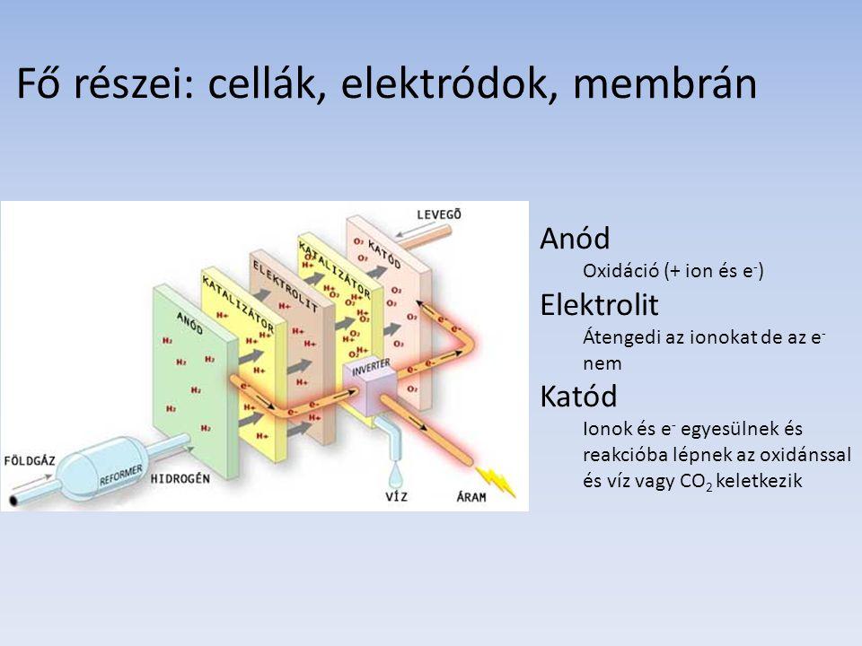 Fő részei: cellák, elektródok, membrán Anód Oxidáció (+ ion és e - ) Elektrolit Átengedi az ionokat de az e - nem Katód Ionok és e - egyesülnek és rea