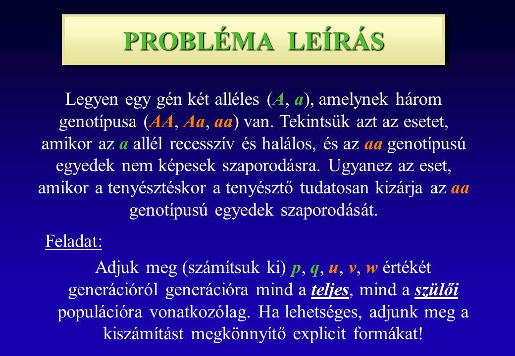 PROBLÉMA LEÍRÁS Legyen egy gén két alléles (A, a), amelynek három genotípusa (AA, Aa, aa) van.