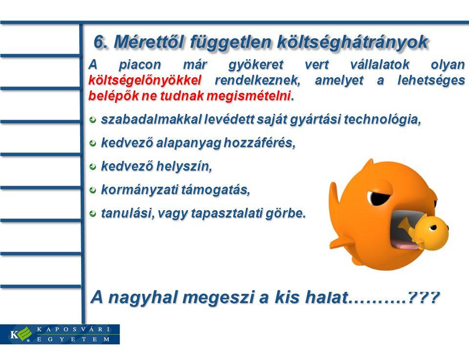 A nagyhal megeszi a kis halat……….??? 6. Mérettől független költséghátrányok 6. Mérettől független költséghátrányok A piacon már gyökeret vert vállalat
