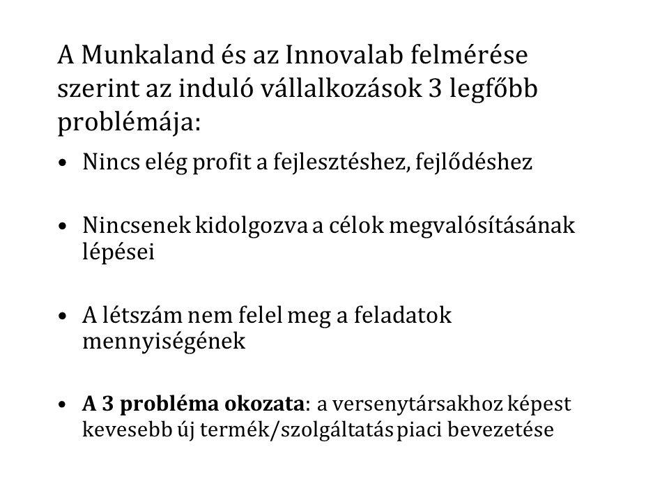 A Munkaland és az Innovalab felmérése szerint az induló vállalkozások 3 legfőbb problémája: Nincs elég profit a fejlesztéshez, fejlődéshez Nincsenek kidolgozva a célok megvalósításának lépései A létszám nem felel meg a feladatok mennyiségének A 3 probléma okozata: a versenytársakhoz képest kevesebb új termék/szolgáltatás piaci bevezetése