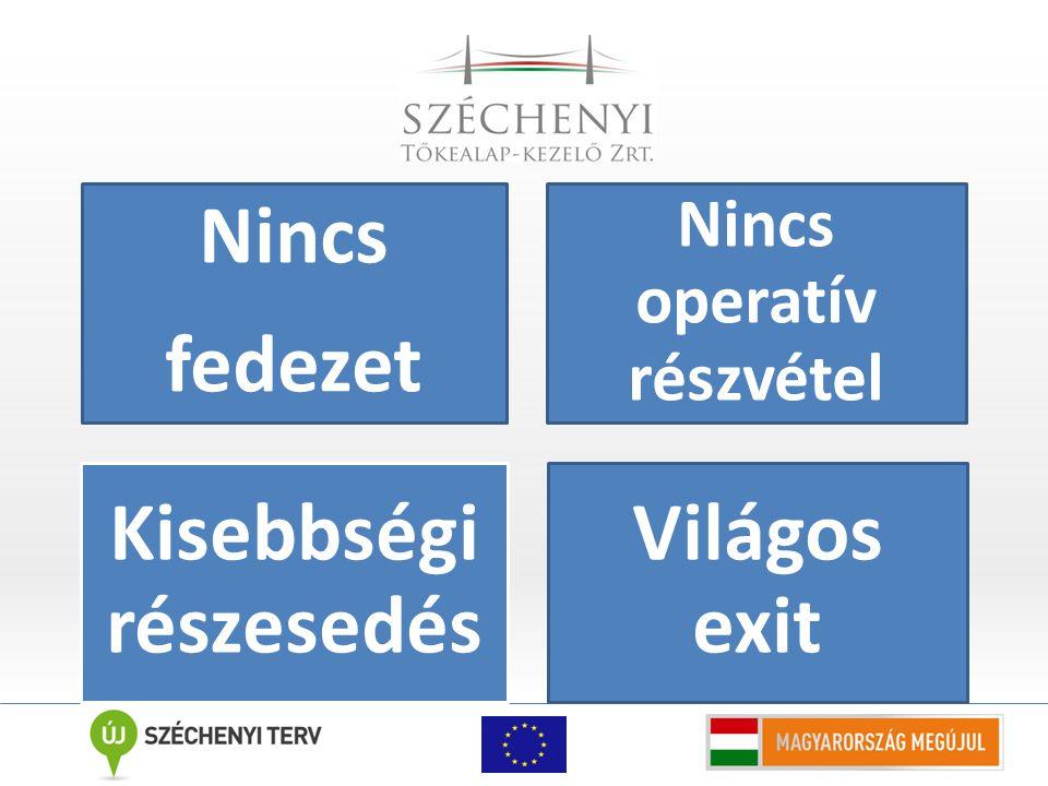 Nincs fedezet Nincs operatív részvétel Kisebbségi részesedé s Világos exit