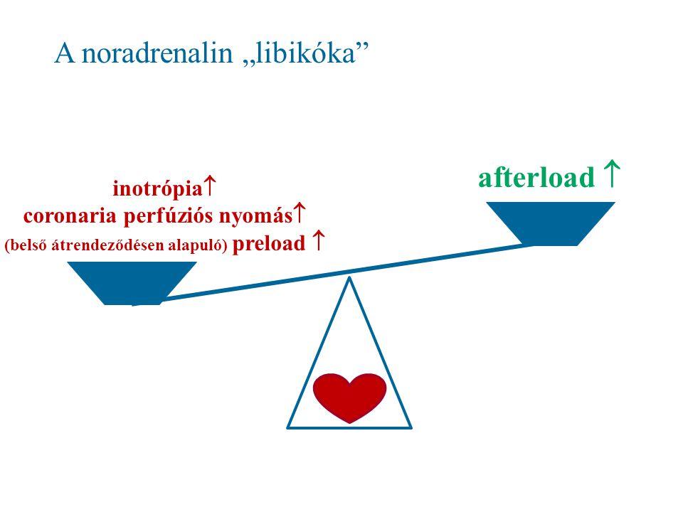 """A noradrenalin """"libikóka inotrópia  coronaria perfúziós nyomás  (belső átrendeződésen alapuló) preload  afterload """