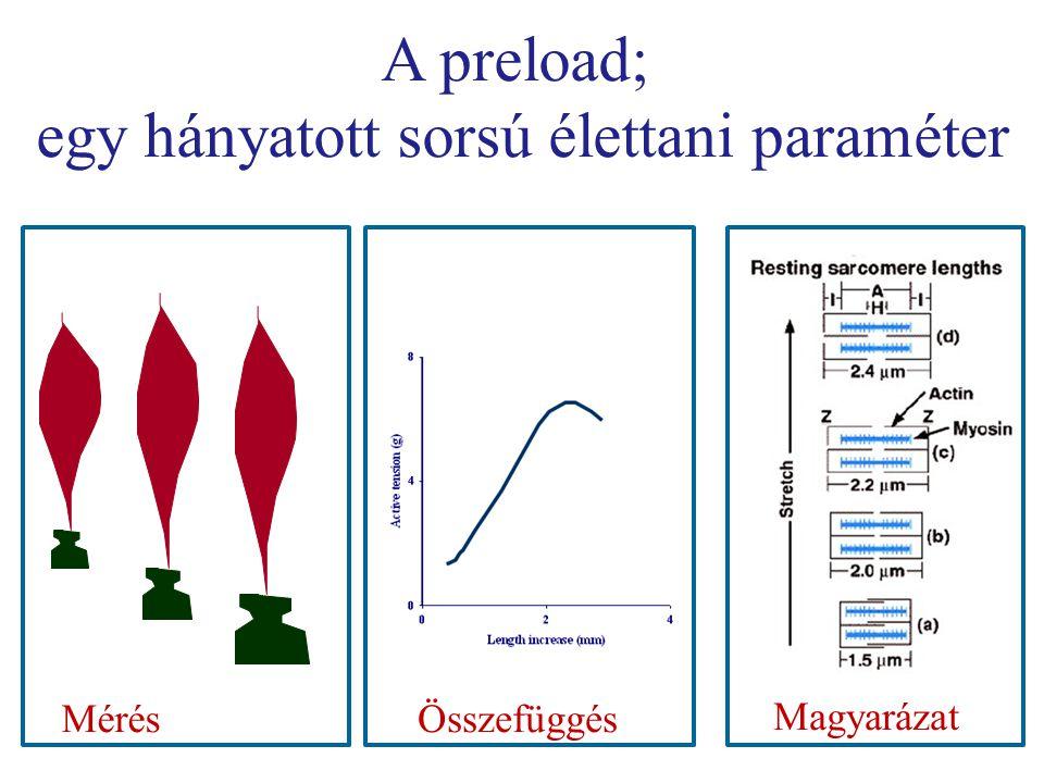 A preload; egy hányatott sorsú élettani paraméter MérésÖsszefüggés Magyarázat