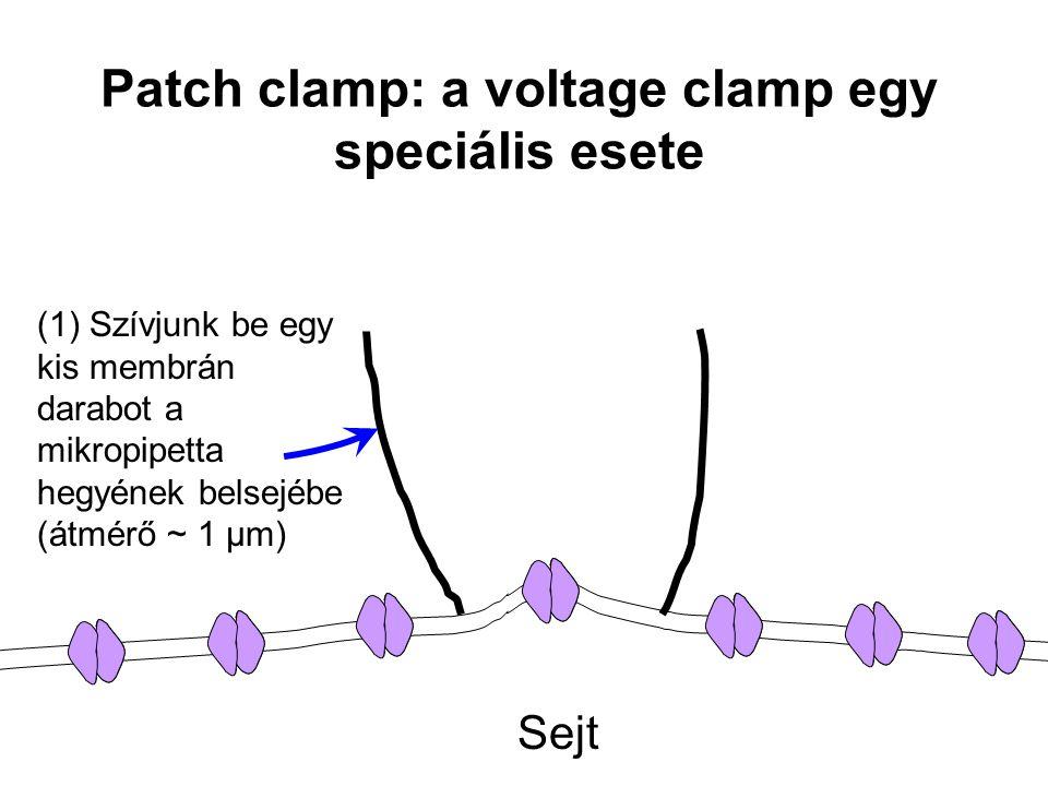 Sejt (1) Szívjunk be egy kis membrán darabot a mikropipetta hegyének belsejébe (átmérő ~ 1 µm)