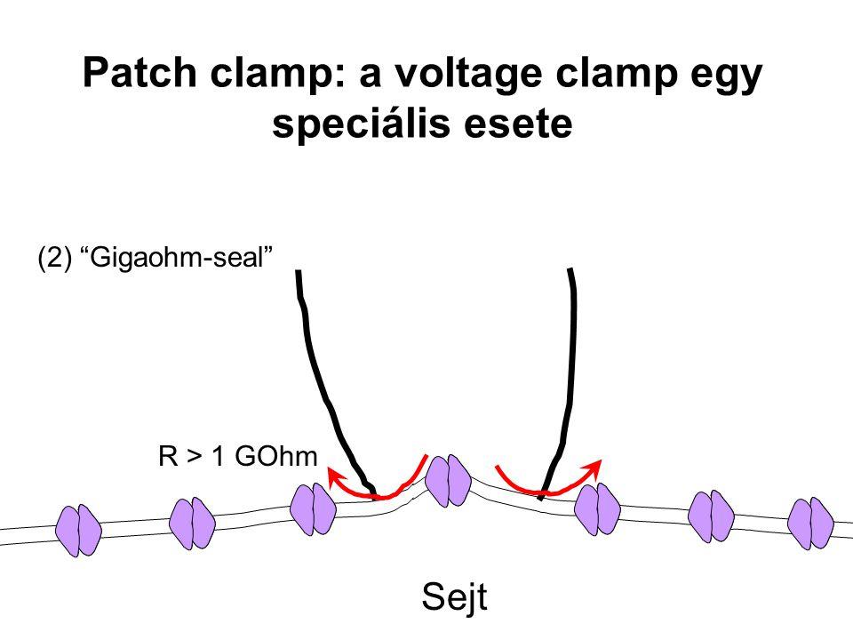 """Patch clamp: a voltage clamp egy speciális esete Sejt (2) """"Gigaohm-seal"""" R > 1 GOhm"""