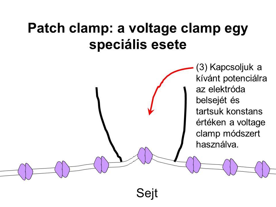 Sejt (3) Kapcsoljuk a kívánt potenciálra az elektróda belsejét és tartsuk konstans értéken a voltage clamp módszert használva. Patch clamp: a voltage