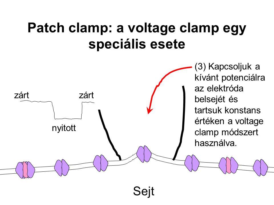 zárt nyitott Sejt (3) Kapcsoljuk a kívánt potenciálra az elektróda belsejét és tartsuk konstans értéken a voltage clamp módszert használva. Patch clam