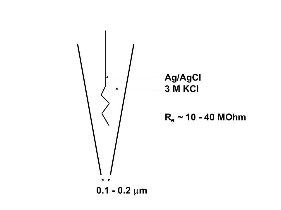 0.1 - 0.2  m Ag/AgCl 3 M KCl R e ~ 10 - 40 MOhm