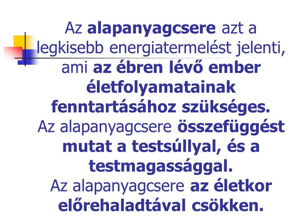 Az alapanyagcsere azt a legkisebb energiatermelést jelenti, ami az ébren lévő ember életfolyamatainak fenntartásához szükséges. Az alapanyagcsere össz