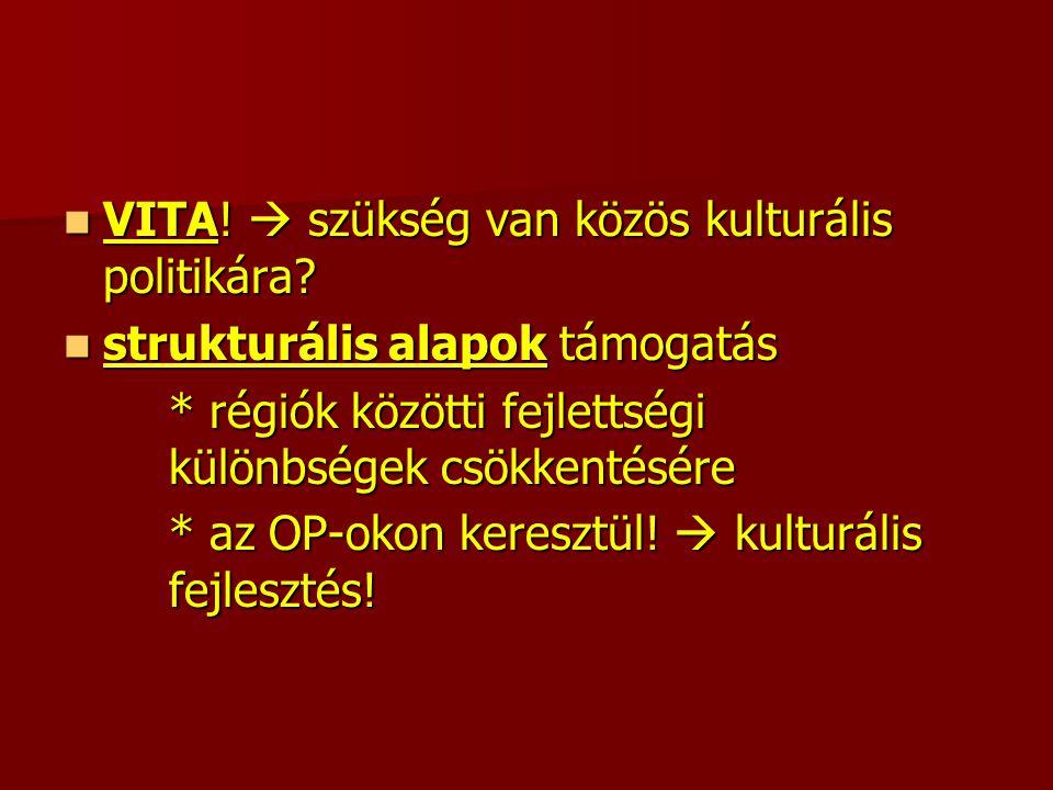 VITA.  szükség van közös kulturális politikára. VITA.