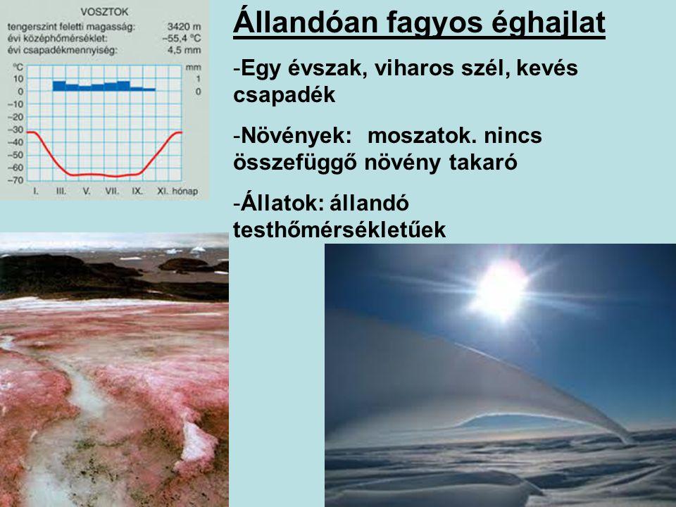 Állandóan fagyos éghajlat -Egy évszak, viharos szél, kevés csapadék -Növények: moszatok. nincs összefüggő növény takaró -Állatok: állandó testhőmérsék