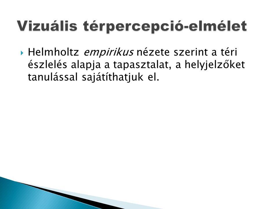  Helmholtz empirikus nézete szerint a téri észlelés alapja a tapasztalat, a helyjelzőket tanulással sajátíthatjuk el.