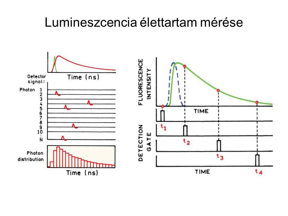 Lumineszcencia élettartam mérése