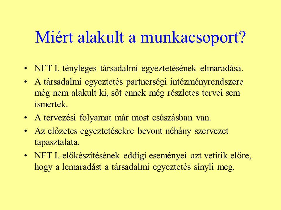 Miért alakult a munkacsoport. NFT I. tényleges társadalmi egyeztetésének elmaradása.