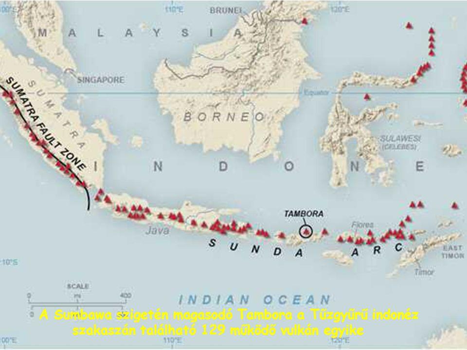 Haraldur Sigurdsson (Rhode Island-i Egyetem, USA) vezetésével 1986-ban adatgyűjtő expedíció indult a Tambora kitörésének vizsgálatára