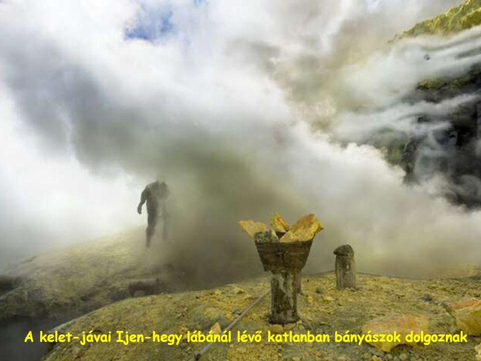 Az égből visszahulló hamu hamar megfojtja a növényeket és megmérgezi a jószágot