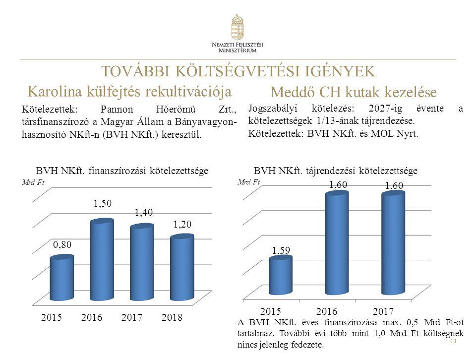 11 TOVÁBBI KÖLTSÉGVETÉSI IGÉNYEK Kötelezettek: Pannon Hőerőmű Zrt., társfinanszírozó a Magyar Állam a Bányavagyon- hasznosító NKft-n (BVH NKft.) keresztül.