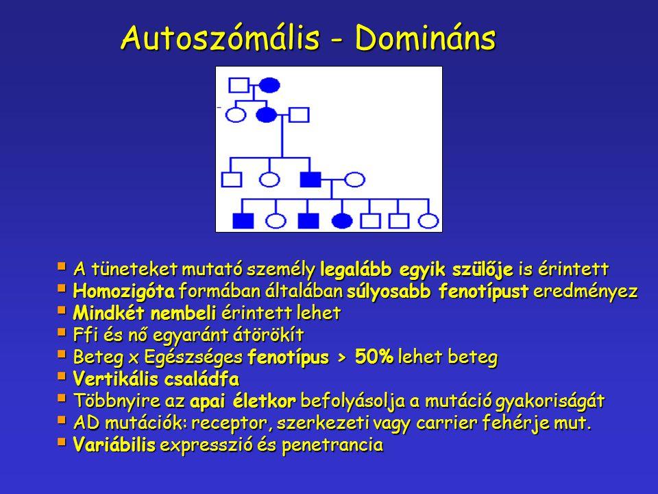 Autoszómális - Domináns  A tüneteket mutató személy legalább egyik szülője is érintett  Homozigóta formában általában súlyosabb fenotípust eredménye