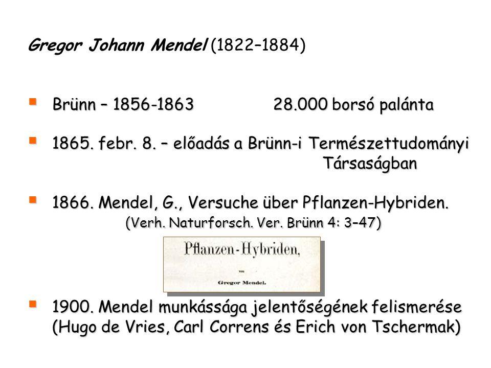 Gregor Johann Mendel (1822–1884)  Brünn – 1856-1863 28.000 borsó palánta  1865. febr. 8. – előadás a Brünn-i Természettudományi Társaságban  1866.