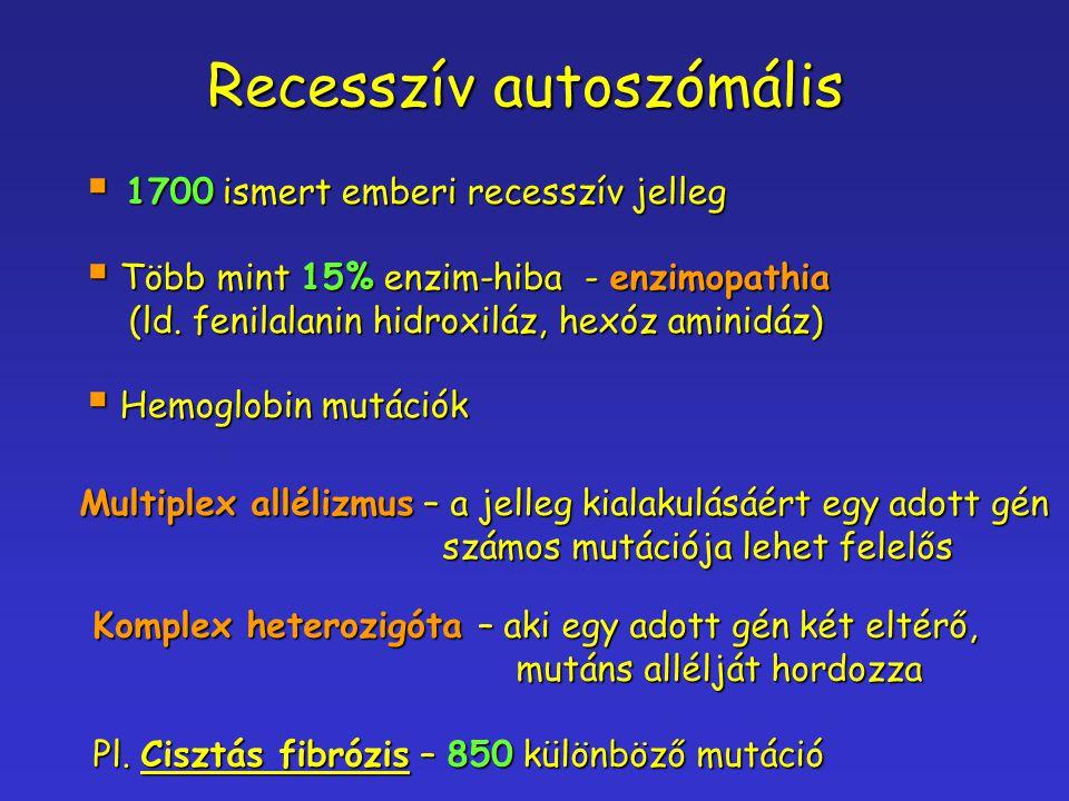 Recesszív autoszómális  1700 ismert emberi recesszív jelleg  Több mint 15% enzim-hiba - enzimopathia (ld. fenilalanin hidroxiláz, hexóz aminidáz) (l
