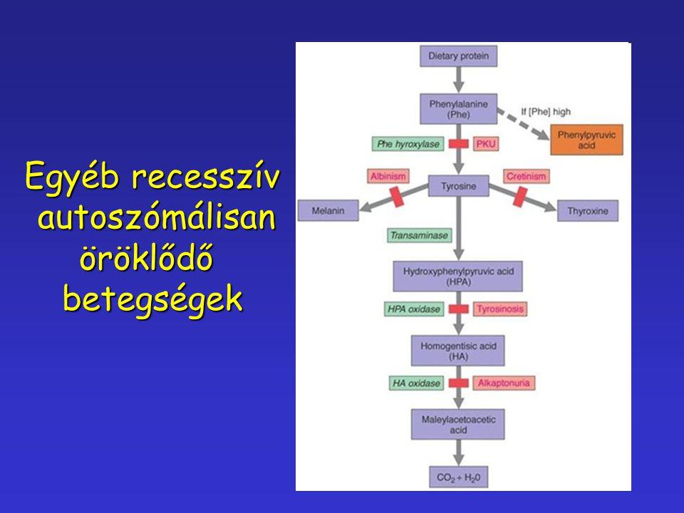 Egyéb recesszív autoszómálisan autoszómálisanöröklődőbetegségek