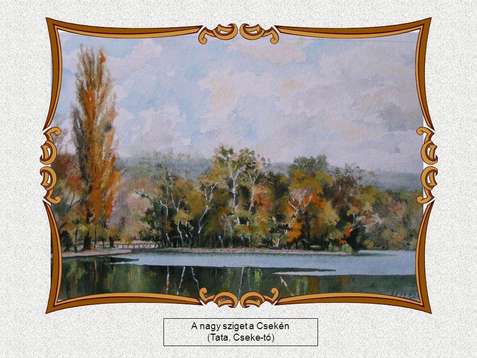 A grófi kastély (Tata, Esterházy-kastély)
