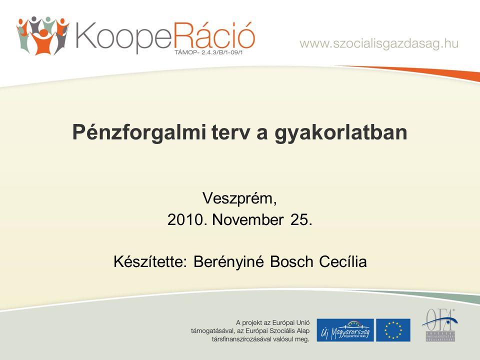 Pénzforgalmi terv a gyakorlatban Veszprém, 2010. November 25. Készítette: Berényiné Bosch Cecília