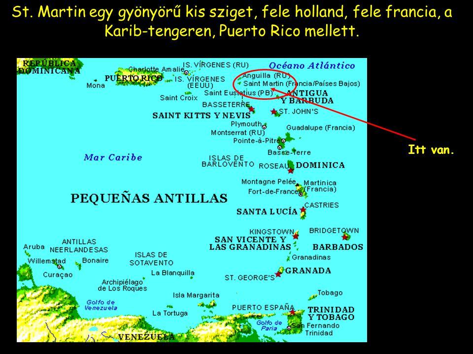 St. Martin egy gyönyörű kis sziget, fele holland, fele francia, a Karib-tengeren, Puerto Rico mellett. Itt van.